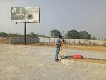 1000 sqft, Plot in Builder mautain haven ext Robertsganj Road, Mirzapur at Rs. 3.5000 Lacs