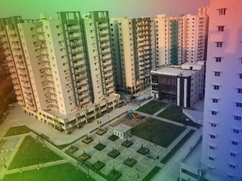 1380 sqft, 3 bhk Apartment in Jain Carlton Creek Manikonda, Hyderabad at Rs. 98.0000 Lacs