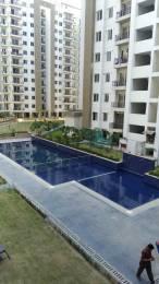 1843 sqft, 3 bhk Apartment in Umang Realtech Pvt Ltd Umang Winter Hills nawada, Delhi at Rs. 1.4000 Cr