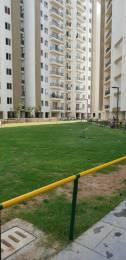2302 sqft, 4 bhk Apartment in Umang Realtech Pvt Ltd Umang Winter Hills nawada, Delhi at Rs. 1.6500 Cr