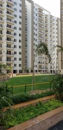 2302 sqft, 4 bhk Apartment in Builder Project Dwarka Road, Delhi at Rs. 1.6500 Cr