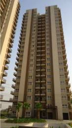 2598 sqft, 3 bhk Apartment in Builder Project Sector 102, Gurgaon at Rs. 1.7147 Cr