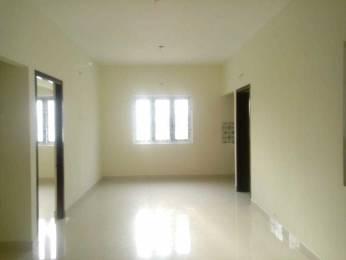 750 sqft, 2 bhk Apartment in Builder Sai Brindavan Thoraipakkam Thoraipakkam OMR, Chennai at Rs. 14000