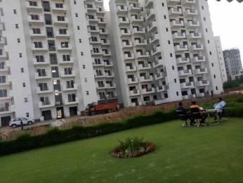 850 sqft, 2 bhk Apartment in GLS Arawali Homes Sector 5 Sohna, Gurgaon at Rs. 17.6100 Lacs