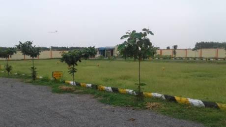 1350 sqft, Plot in Builder Vharsha Paradise Kantheru Road, Guntur at Rs. 18.7500 Lacs