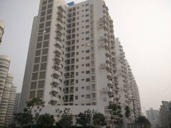 250 sqft, 1 bhk Apartment in Emaar Palm Drive Sector 66, Gurgaon at Rs. 10.0000 Lacs