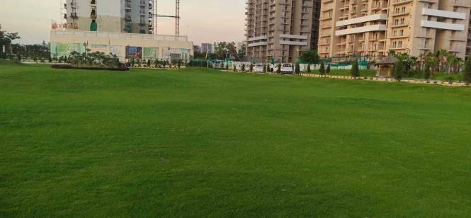 1292 sqft, 3 bhk Apartment in SRPL Flora Heritage Sector 1 Noida Extension, Greater Noida at Rs. 45.2200 Lacs