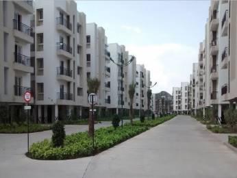 962 sqft, 2 bhk Apartment in Jain Alpine Meadows Pammal, Chennai at Rs. 18000