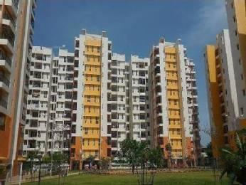 1166 sqft, 2 bhk Apartment in Olympia Grande Pallavaram, Chennai at Rs. 19000
