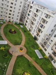 1280 sqft, 2 bhk Apartment in Empire Meadows Miyapur, Hyderabad at Rs. 51.2000 Lacs
