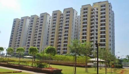 1362 sqft, 2 bhk Apartment in Vipul Gardens Shankarpur, Bhubaneswar at Rs. 59.0000 Lacs