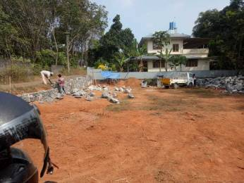 7971 sqft, Plot in Builder Project Pallikkara, Kochi at Rs. 60.3900 Lacs