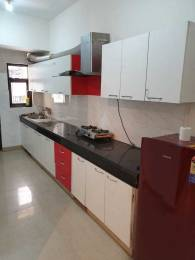 2500 sqft, 2 bhk Apartment in Builder Project Brs nagar, Ludhiana at Rs. 32000