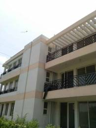 2700 sqft, 3 bhk BuilderFloor in Puri VIP Floors Sector 81, Faridabad at Rs. 67.0000 Lacs