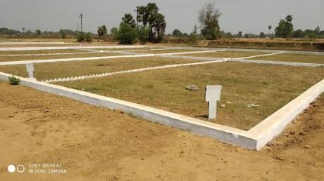 1000 sqft, Plot in Builder Omna IIT BIHTA, Patna at Rs. 6.5000 Lacs