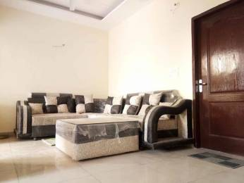 1125 sqft, 3 bhk Apartment in Bajwa Sunny Eco Sector 125 Mohali, Mohali at Rs. 27.9000 Lacs