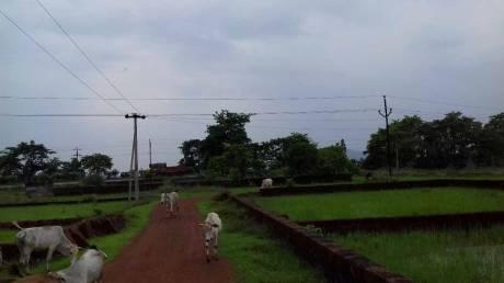 1200 sqft, Plot in Builder Near Jatani gate towards khordha NH16 side Janla, Bhubaneswar at Rs. 7.2000 Lacs