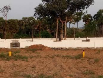 1494 sqft, Plot in Builder Nandanavanam subhaprada Thagarapuvalasa Bheemili Road, Visakhapatnam at Rs. 19.9200 Lacs