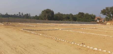 1000 sqft, Plot in Builder Tashi Naubatpur Bikram Road, Patna at Rs. 3.5000 Lacs