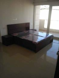 2020 sqft, 4 bhk Apartment in Alliance The Eminence Shatabgarh, Zirakpur at Rs. 80.0000 Lacs
