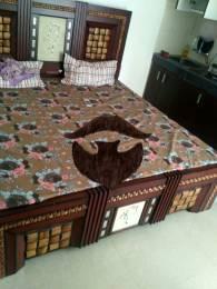 475 sqft, 1 bhk Apartment in  Maya Garden City Nagla, Zirakpur at Rs. 11000