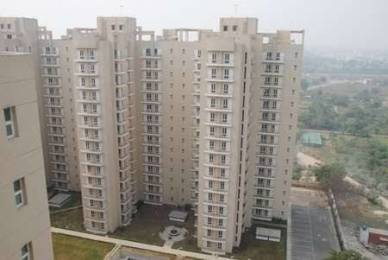 1130 sqft, 2 bhk Apartment in Shiv Park 1 Apartments Sector 87, Faridabad at Rs. 44.0000 Lacs