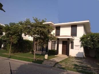 4750 sqft, 4 bhk Villa in Vipul Tatvam Villas Sector 48, Gurgaon at Rs. 5.5000 Cr