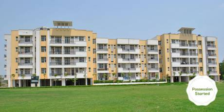 1350 sqft, 2 bhk Apartment in Builder Project Ambala Chandigarh Expressway, Ambala at Rs. 31.9900 Lacs