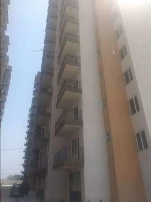 1050 sqft, 2 bhk Apartment in Pyramid Fusion Homes Sector 70A, Gurgaon at Rs. 24.4200 Lacs