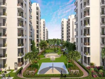 1137 sqft, 2 bhk Apartment in Builder sushma joynest Airport Road, Chandigarh at Rs. 37.9000 Lacs