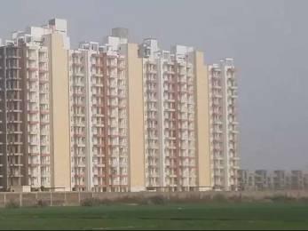 1602 sqft, 3 bhk Apartment in KLJ Greens Sector 77, Faridabad at Rs. 47.0000 Lacs