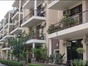 1600 sqft, 3 bhk Apartment in Builder Project Brs nagar, Ludhiana at Rs. 28000