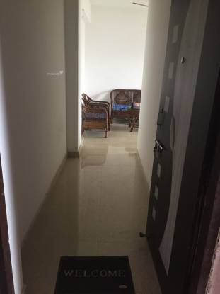 1100 sqft, 2 bhk Apartment in Builder 2 bhk Furnished Flat in The Shelter Bailey Road, Patna at Rs. 11000