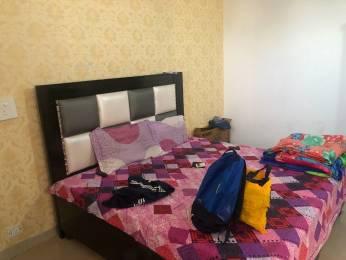 450 sqft, 1 bhk Apartment in Motia Heights Dhakoli, Zirakpur at Rs. 15.7500 Lacs