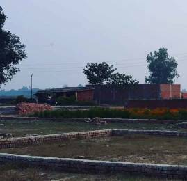 1000 sqft, Plot in Builder Saraswati green city Jhusi Road, Allahabad at Rs. 8.0000 Lacs