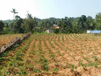 5220 sqft, Plot in Builder Project Sreekariyam, Trivandrum at Rs. 30.0000 Lacs