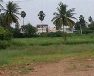 5400 sqft, Plot in Builder Project International Airport, Hyderabad at Rs. 60.0000 Lacs