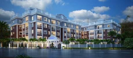 1690 sqft, 3 bhk Apartment in Builder Rajvihan Nandan Vihar Patia, Bhubaneswar at Rs. 64.2200 Lacs
