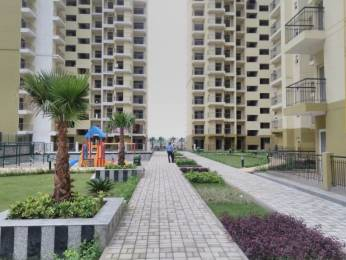 1350 sqft, 3 bhk Apartment in Trident Embassy Sector 1 Noida Extension, Greater Noida at Rs. 48.0000 Lacs