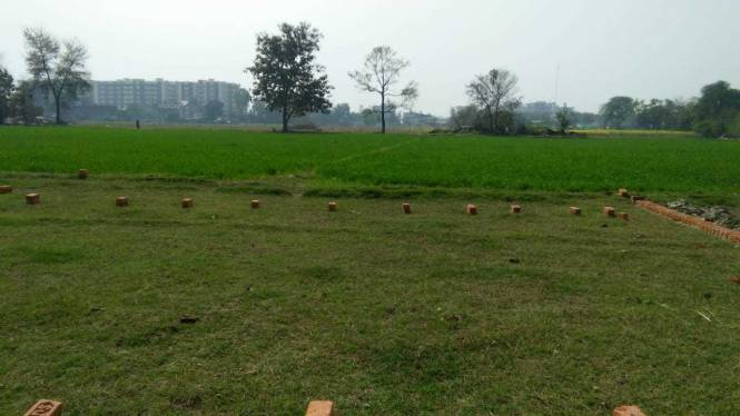 1000 sqft, Plot in Builder Vinay Pranjal Malhaur Station Road, Lucknow at Rs. 10.5000 Lacs
