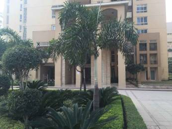 4900 sqft, 5 bhk Villa in Emaar The Palm Springs Villa Sector 54, Gurgaon at Rs. 1.9500 Lacs