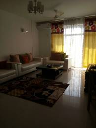 1935 sqft, 3 bhk Apartment in ABA ABA Olive County Sector 5 Vasundhara, Ghaziabad at Rs. 29000