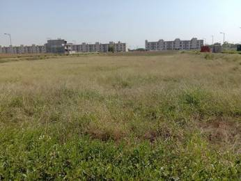 1350 sqft, Plot in Builder Project Sector 85 Mohali, Mohali at Rs. 48.0000 Lacs