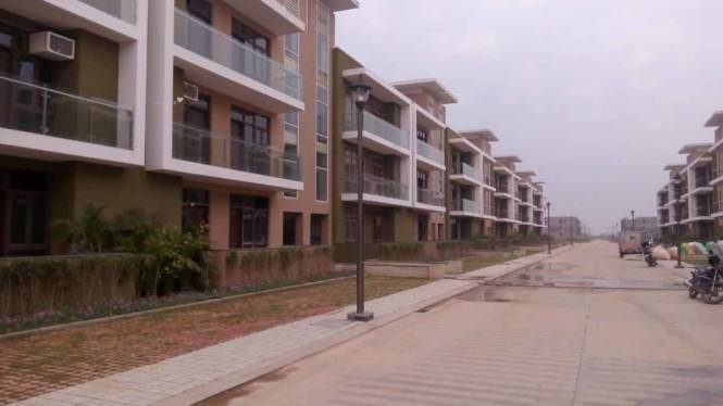 1725 sqft, 3 bhk Apartment in Omaxe Cassia Floors Mullanpur, Mohali at Rs. 59.5000 Lacs