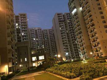 1365 sqft, 3 bhk BuilderFloor in Nirala Aspire Sector 16 Noida Extension, Greater Noida at Rs. 47.7750 Lacs