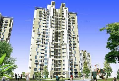 1000 sqft, 2 bhk Apartment in BPTP Spacio Park Serene Sector 37D, Gurgaon at Rs. 58.0000 Lacs