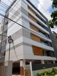2150 sqft, 3 bhk Apartment in Builder raga enclave Patamatalanka, Vijayawada at Rs. 60000