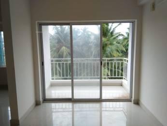 1450 sqft, 3 bhk Apartment in Builder Project Mallikatte, Mangalore at Rs. 68.0000 Lacs