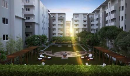 1665 sqft, 3 bhk Apartment in Sagara The Address Madhurawada, Visakhapatnam at Rs. 58.2750 Lacs