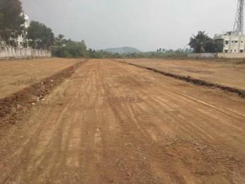 1250 sqft, Plot in Builder srm college near kattankulathur Kattankolatur RF, Chennai at Rs. 25.0000 Lacs